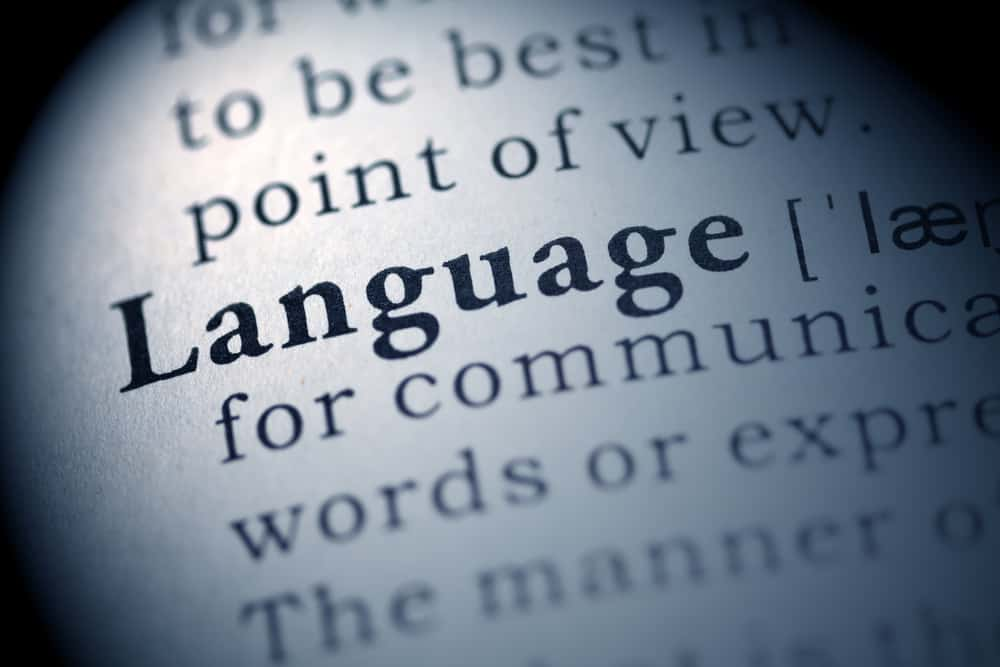 definition of the word language in a dictionary