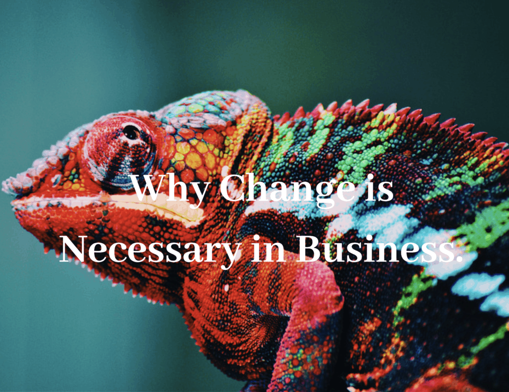 Cameloen that changes color, change is very important in business.