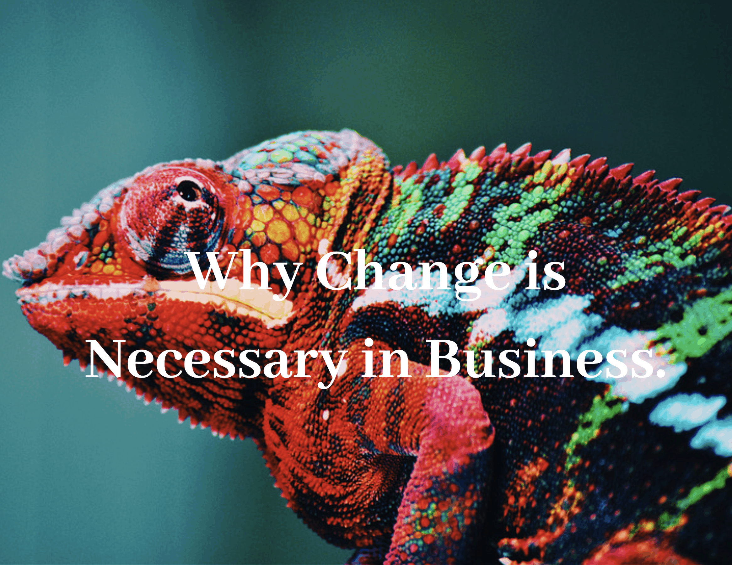 Cameleon that changes color, change is very important in business.