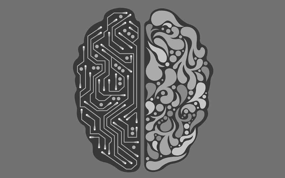 Two sides of the brain one side is depicting artificial intelligence