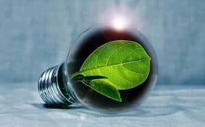 6 Ways to Green Up Your Business