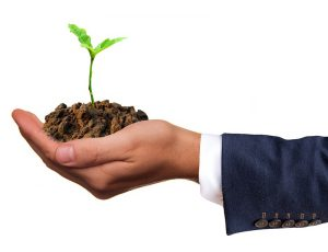5 Green Businesses You Can Start