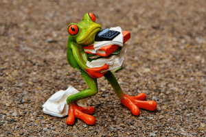 Frog struggling under the burden of heavy load