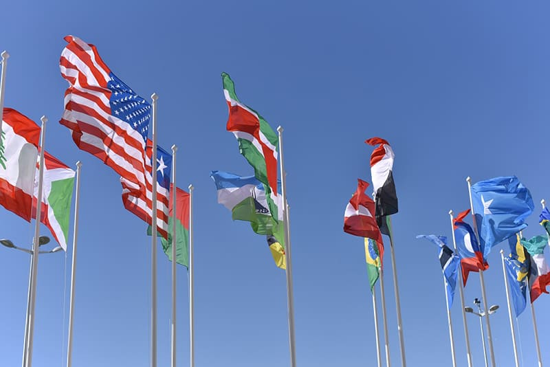 How to Expand Your Small Business Using Translation Services - collection of flags