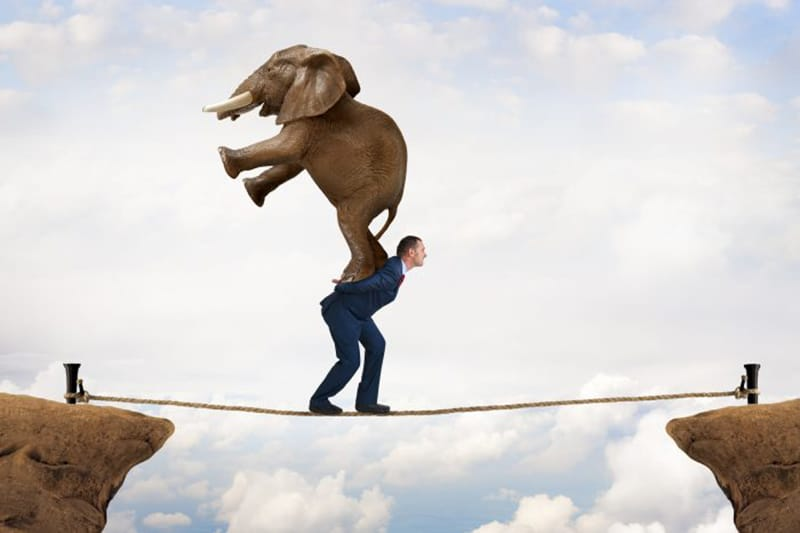 Compliance Project Management Best Practices - one bite of your elephant at a time