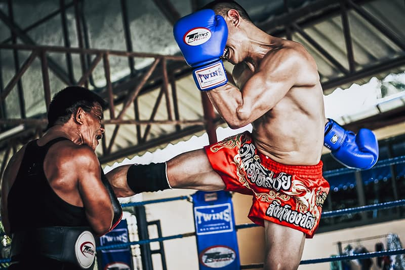 Opening Muay Thai Training For Weight Loss In Thailand Is A Profitable Business