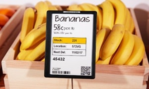 Bananas in box - shelf label