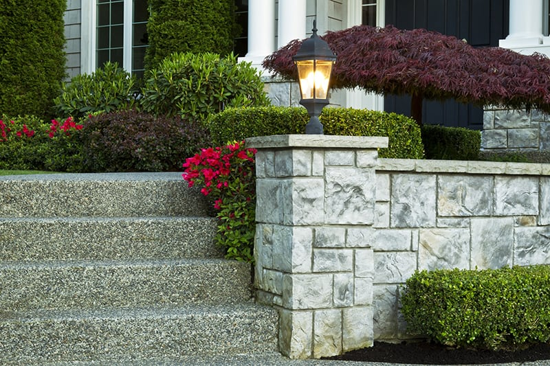 Gorgeous curb appeal - plants and flowers outside a property