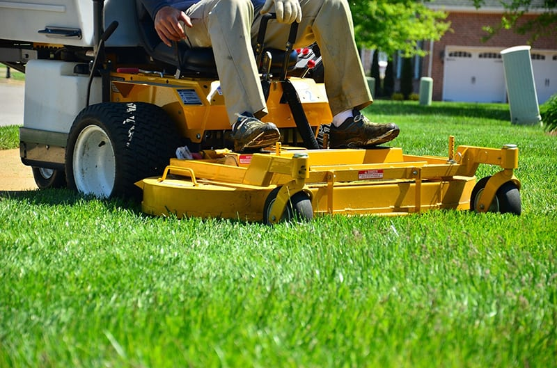 Person sitting on yellow ride-on lawn mower