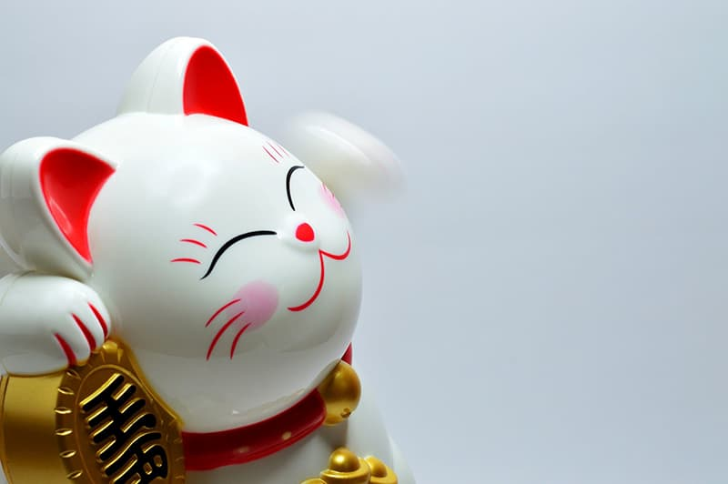 Japenese lucky coin cat