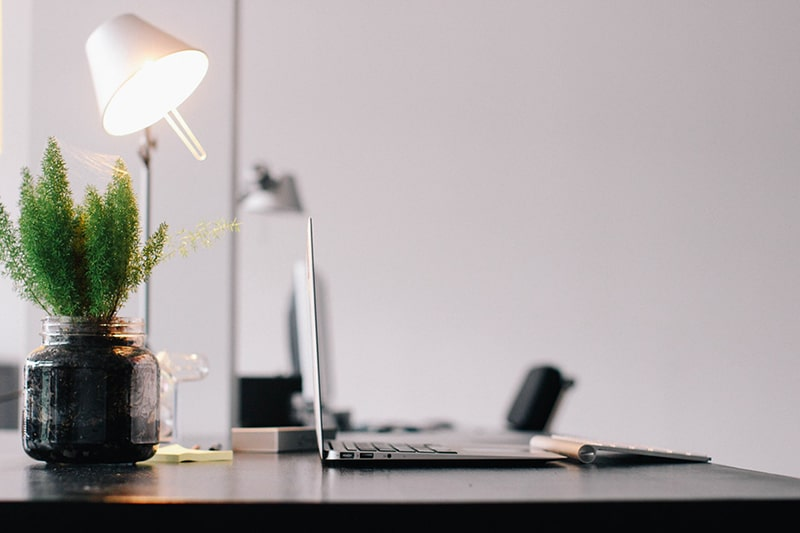 plant on desk with laptop and lamp in a home office