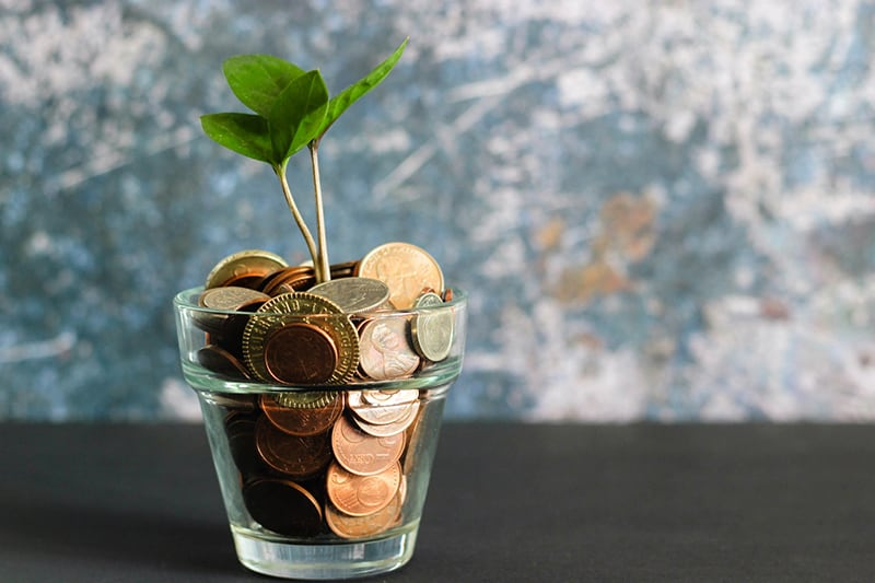 Coins in a clear vase with a plant representing growing savings - personal finances