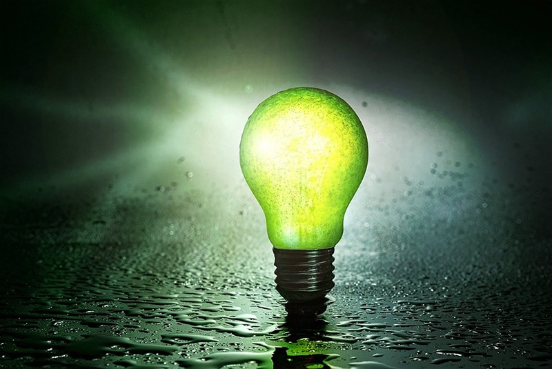 green energy – light bulb fruit pear water