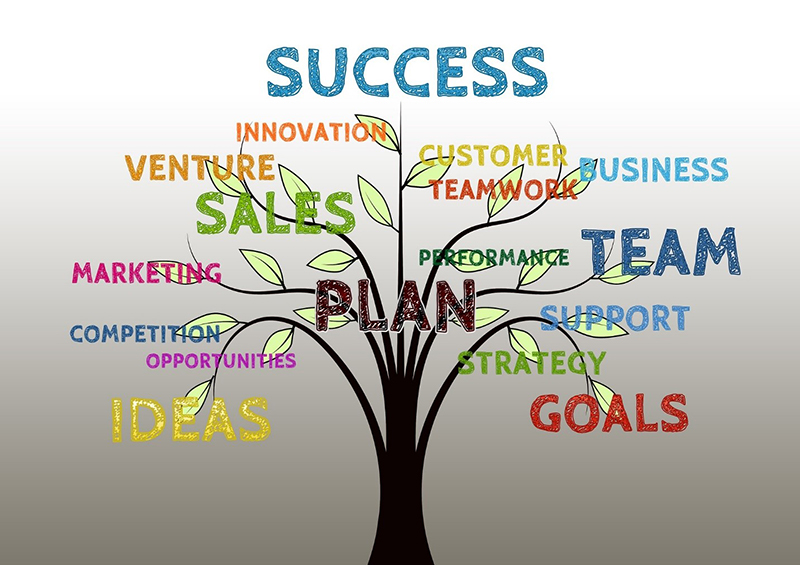 Success Infographic for marketing strategies