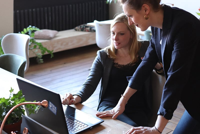 two women from a consulting business looking at a laptop screen.