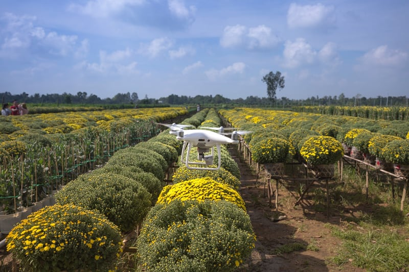 phantom drone flying over agricultural fields