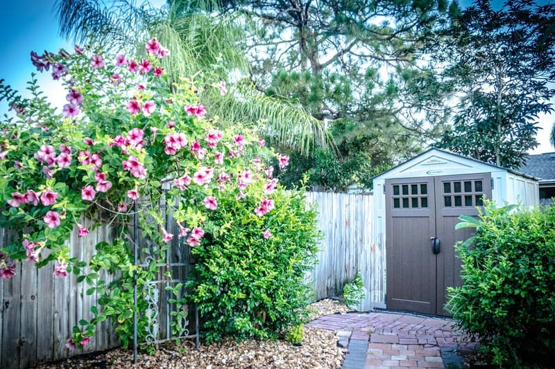 Shed in yard with flowers