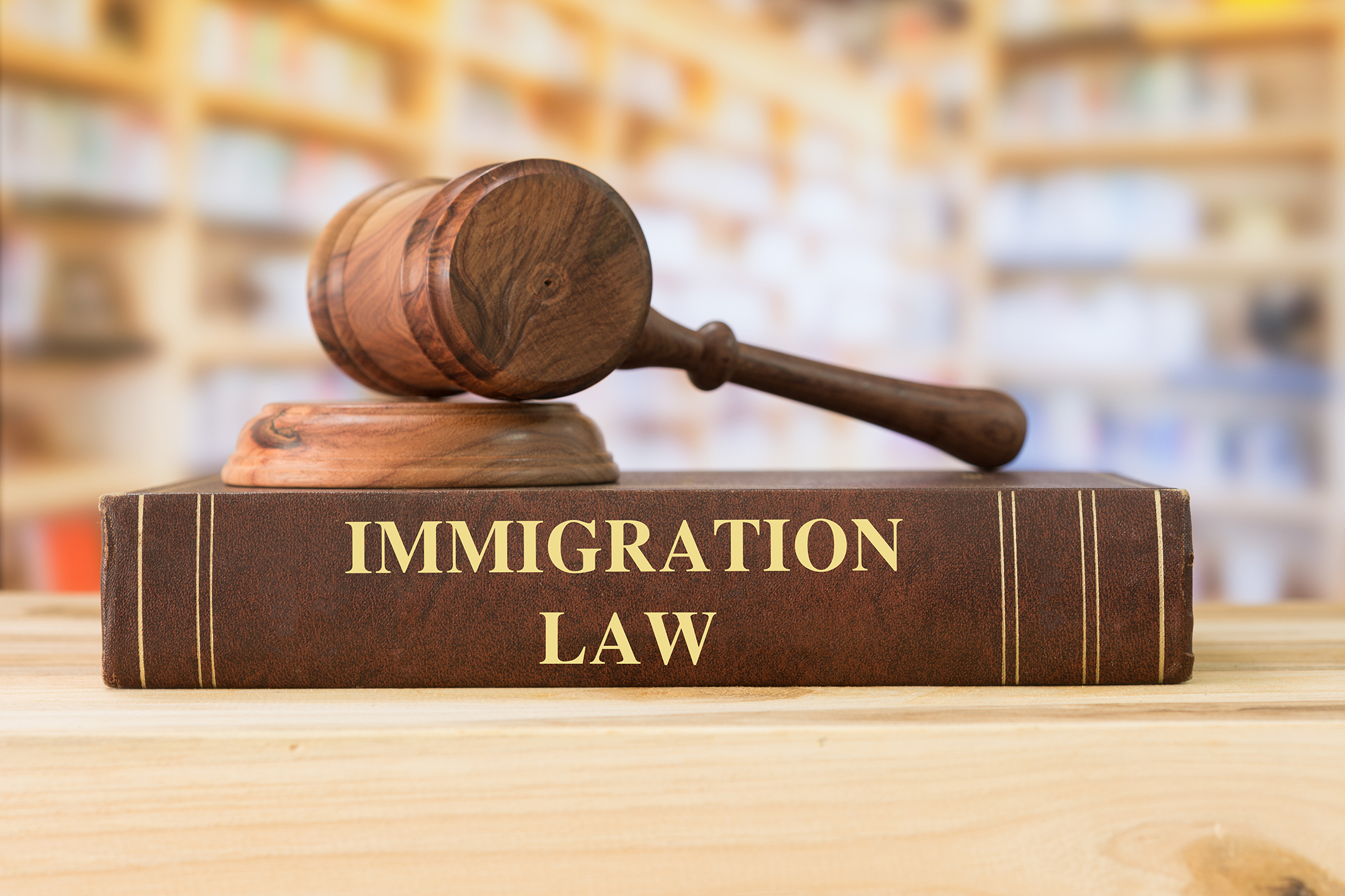 immigration Law books and judges gavel