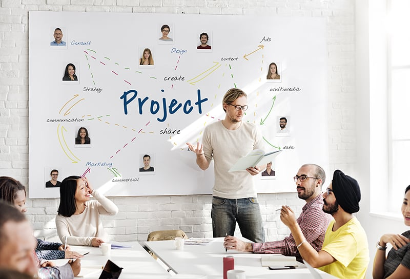 Marketing Research Team Project Management Organization Company