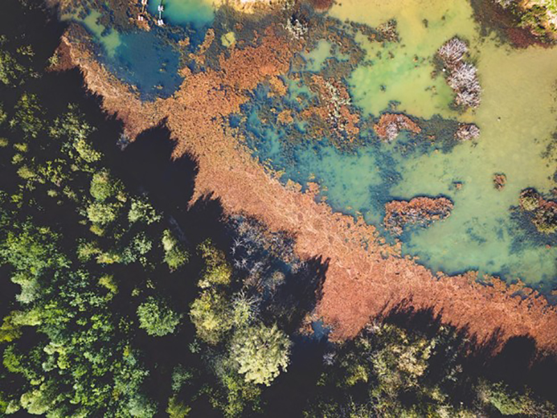 aerial voew of land and sea