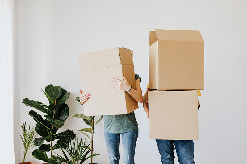 Couple carrying cardboard boxes in living room
