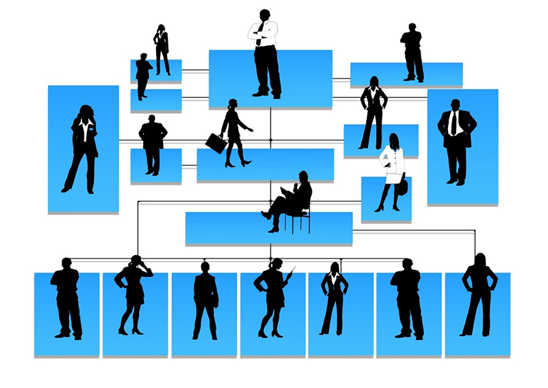 Organizational chart of people illustration