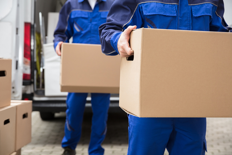 Close-up Of Two Mover's Hand In Uniform Carrying Cardboard Box - relocation