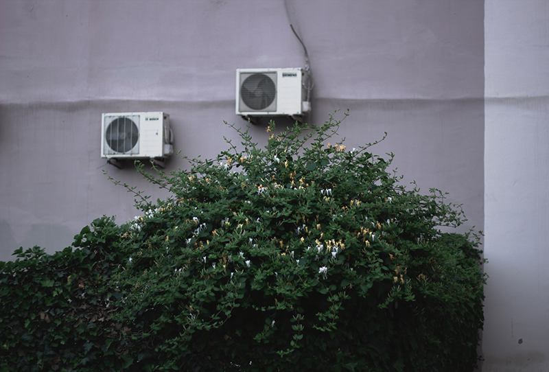 green leaf of bushes in front of house with air con units on the wall