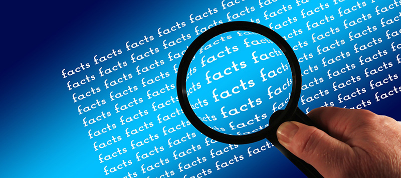 Magnifying glass facts examine