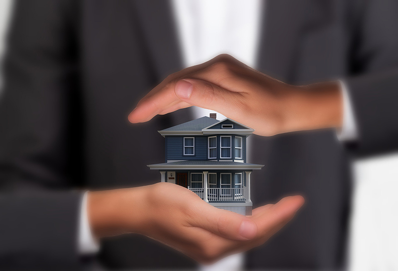 House and real Estate hands