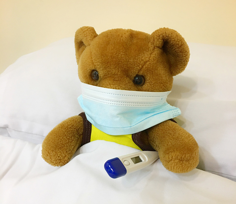 Brown bear plush toy with facemask