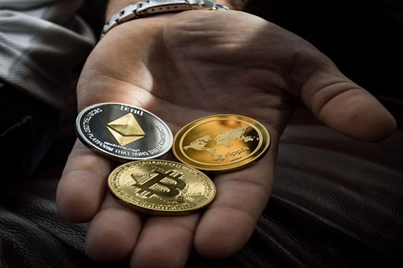 Hand of person holding bitcoin