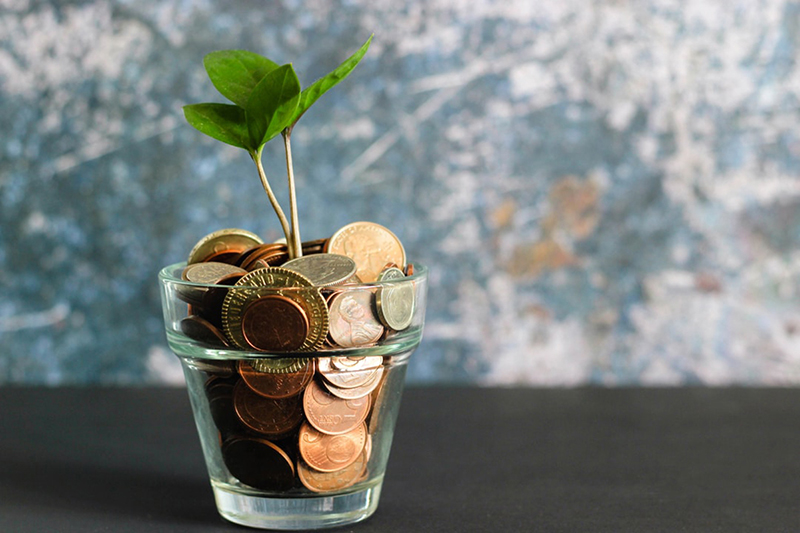 Coins and small plant in a glass